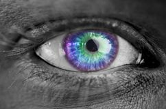 Multi colored eye on grey face Royalty Free Stock Image