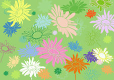 Multi-colored flowers on a green background, with varying degree Stock Image