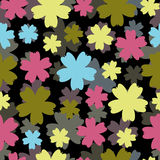 Multi-colored flowers on a homogeneous background Stock Images