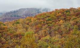Multi-colored forest trees during autumn season around Mt. Shiga area. Stock Photography