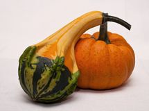 A gourd and a pumpkin royalty free stock image