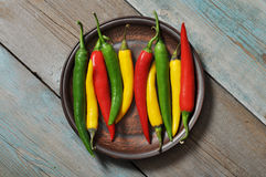 Multi colored hot chili peppers Stock Image