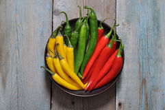 Multi colored hot chili peppers Stock Photography
