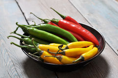 Multi colored hot chili peppers Stock Images