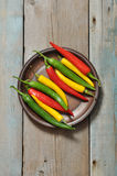 Multi colored hot chili peppers Royalty Free Stock Photo