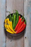 Multi colored hot chili peppers Royalty Free Stock Images