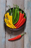 Multi colored hot chili peppers Stock Photo