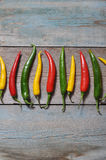 Multi colored hot chili peppers Royalty Free Stock Image