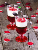 Multi-colored jelly with pomegranate Royalty Free Stock Images