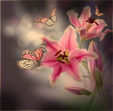 Multi-colored lilies on a dark. Background royalty free illustration