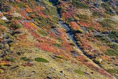 Multi-colored mountain Stock Image