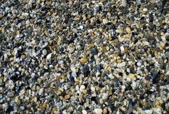 Multi-colored overzeese kiezelstenen en zeeschelpen op de kust stock afbeeldingen