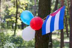 Multi colored party balloons with texas state flag Stock Image