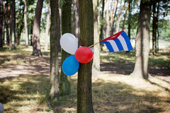 Multi colored party balloons with texas state flag Royalty Free Stock Photography