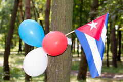 Multi colored party balloons with texas state flag Royalty Free Stock Photos