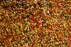 Multi-colored peppercorn Stock Images