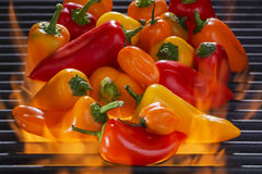 Multi colored Peppers on a Hot Flaming Barbecue Grill Royalty Free Stock Images