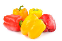 Multi-colored peppers on a white background Stock Photography