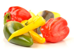 Multi-colored peppers on a white background Royalty Free Stock Photo