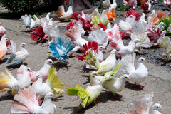 Multi-colored pigeons. Beautiful Multi-colored pigeons walking Royalty Free Stock Photos