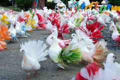 Multi-colored pigeons. On the ground Royalty Free Stock Photography
