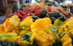 Multi-colored pile of bell peppers at farmer's market Royalty Free Stock Images