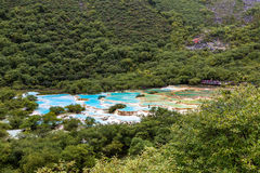 Multi Colored pond in Huanglong National Park, Sichuan, China Royalty Free Stock Photo