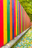 Multi colored rainbow wooden fence in autumn, garden background, soft focus, shallow depth of field Stock Photography