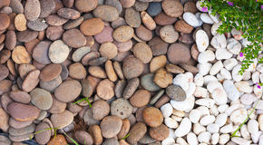 Multi-colored river rocks Royalty Free Stock Photos