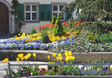 Free Multi Colored Spring Flowers, House With Shutters In The Background Stock Image - 92049351