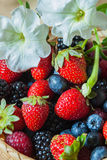 Multi-colored summer berries , blueberries, strawberries, raspberries and blackberries, in wicker plate. Vertical. Healthy, detox superfood concept Royalty Free Stock Image
