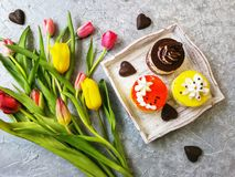 Multi-colored tulips with a Cup of tea with cakes and chocolates stock photos