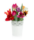 Multi colored tulips in flowerpot Stock Photography