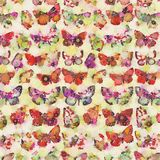 Multi colored watercolor butterfly collage background Stock Photography
