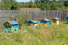 Multi-colored wooden beehives Royalty Free Stock Photo