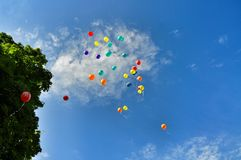 Multi-coloured balloons depart to the sky Royalty Free Stock Images