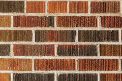 Multi coloured brick wall background Royalty Free Stock Photos