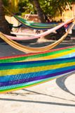 Multi Coloured Hammocks Hanging on Tropical Palm Trees royalty free stock image