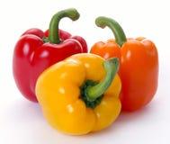 Multi-coloured paprika Stock Photography
