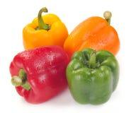 Multi-coloured paprika Royalty Free Stock Image