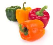 Multi-coloured paprika Stock Image