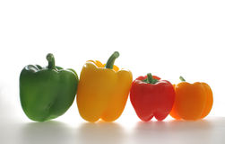Multi-coloured pepper. Green, yellow, red and orange pepper on a white background Stock Photography