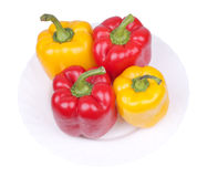 Multi-coloured pepper on a plate Royalty Free Stock Image