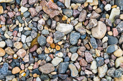Multi-coloured sea stones Stock Photography