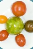 Multi-coloured tomatoes Stock Image