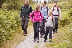 Multi conversa da família da geração ao andar no campo durante um feriado de acampamento, comprimento completo imagem de stock royalty free