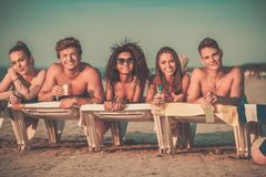 Multi ethnic friends on a beach Royalty Free Stock Photo