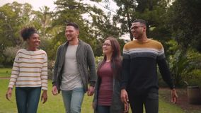 Group of multi ethnic friends walking together happily in the park. Multi ethnic friends walking happily in the park stock video footage