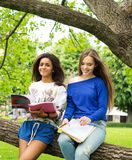 Multi ethnic girls in a park Royalty Free Stock Photos
