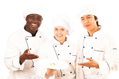 Multi-ethnic Group Of Cooks stock images